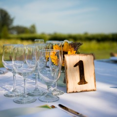 Outdoor dinner party photograph